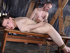 A Hungry Youngster Mouth To Feed - Eli Manuel..